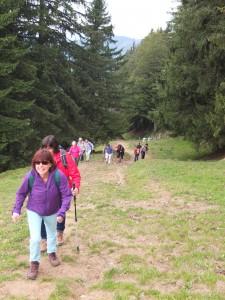 Wir erklimmen die Hügel mit Ziel Chrüzegg.